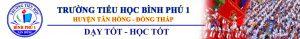 banner TH BINH PHU 1